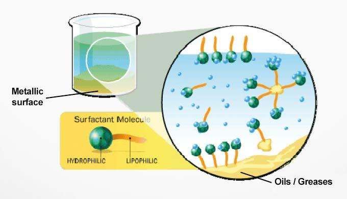 surfactant effects global mechanism